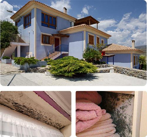 Humedad ideal en casa good cool top ejemplo with humedad relativa ideal en casa with humedad - Humedad ideal en casa ...